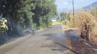 Καλαμάτα: Πυρκαγιά στον Μπουρνιά (2)