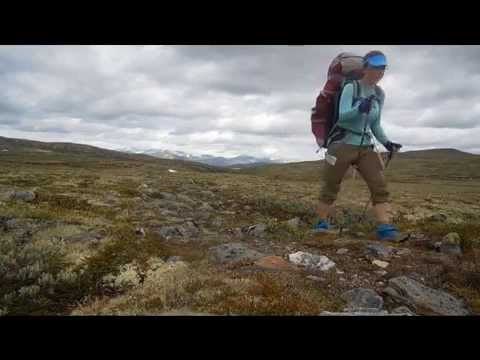 Dovrefjell & Rondane 2014
