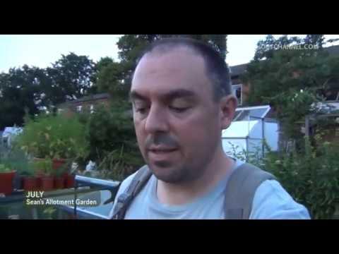 Видео Hessayon vegetable and herb expert
