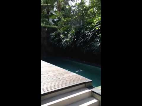 Our beautiful first family holiday in Bali