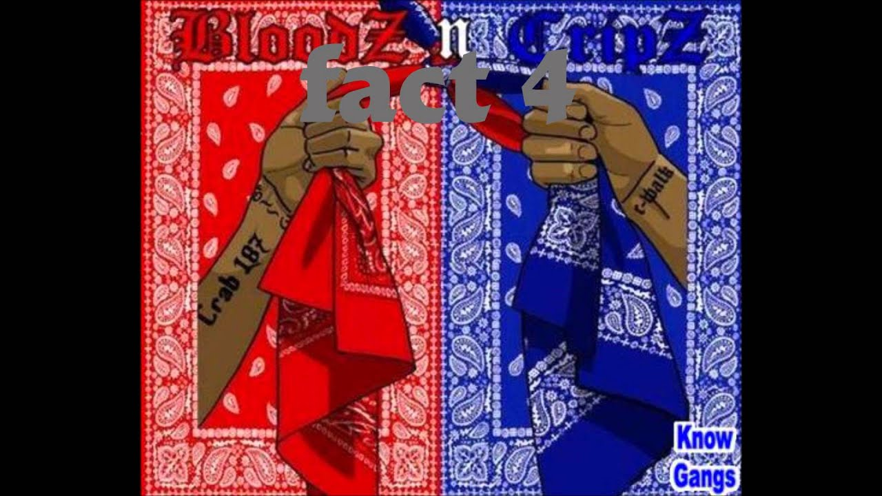 10 FACTS THAT EVERYBODY SHOULD KNOW ABOUT #001Crips And