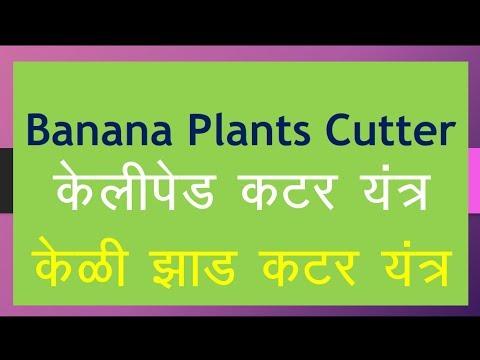 Smart Farming  -Banana Plants ( tree ) Cutter or shredder  - Reuse  Banana Wastage