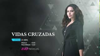 Vidas Cruzadas - Quinta Chamada de Estreia na ZAP Novelas (Násli)
