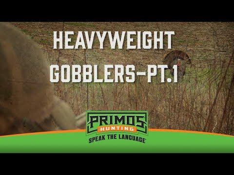 HEAVYWEIGHT GOBBLERS PT. 1