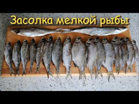 как посолить мелкую рыбу в домашних условиях