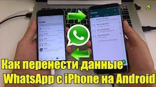 Как перенести данные  WhatsApp с iPhone на Android