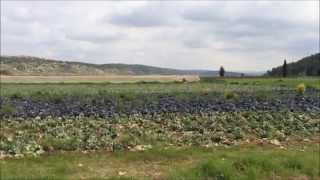 Bible Places David and Goliath The Valley Of Elah