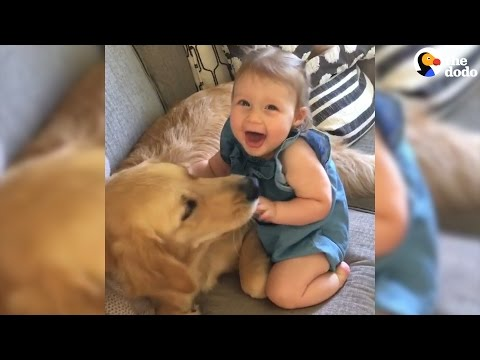 Kids Growing Up With Dogs