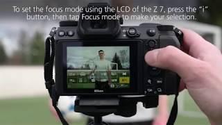 Z Series: Autofocus Modes Tutorial