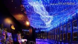 今年の夏イチオシの都内イベント 東京タワーに浮かぶ天の川のイルミネー...