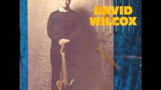Watch David Wilcox That Hypnotizin Boogie video
