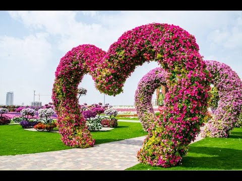 Amazing Tourist Place in DUBAI - Miracle Gardens, Dubai Lands