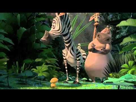 Law of the Jungle - Madagascar