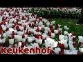 Keukenhof gardens 2019 | Tulip fields Netherlands | Keukenhof flower garden