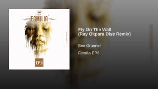 Fly On The Wall (Ray Okpara Dise Remix)