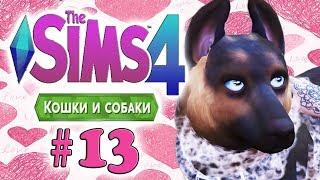 The Sims 4 Кошки и Собаки #13 - ♥Жених для Цири♥