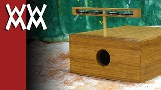 Build Your Own Multi-function Stomp Box / Tambourine / Cajon