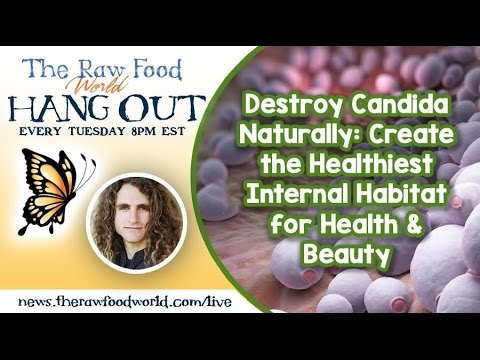 Hangout: Destroy Candida Naturally: Create the Healthiest Internal Habitat for Health & Beauty
