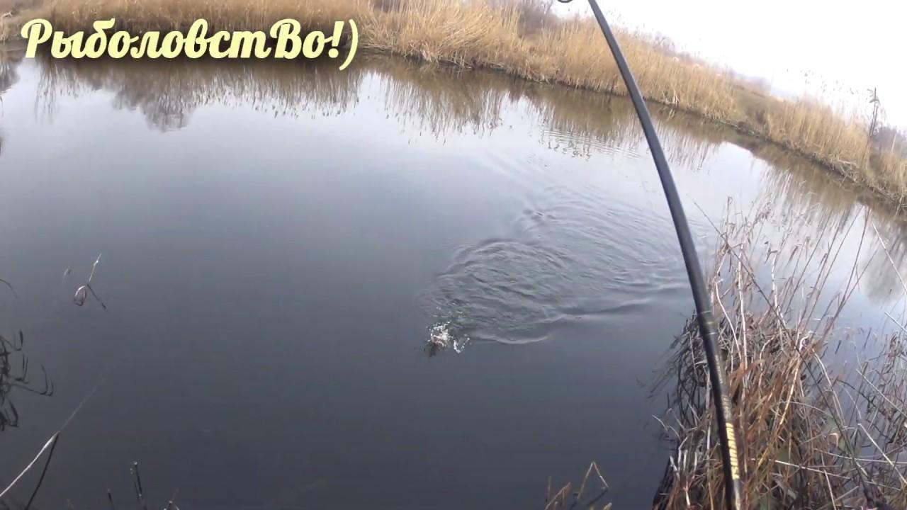 Рыбалка в каменске-шахтинском на северском-донце