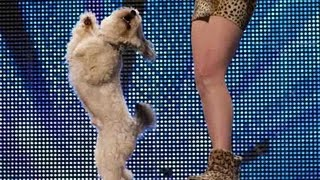 Talented dog and girl at Britain's Got Talent