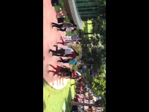 Capgemini - continental Europe flash mob