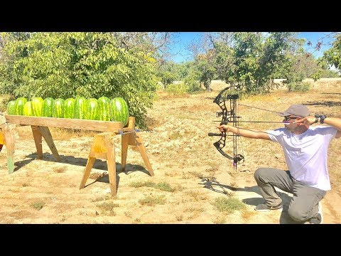 How Many Watermelons it takes to stop Arrows?