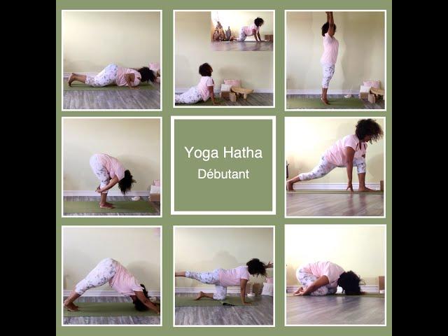 Cours de Yoga Hatha - Débutant