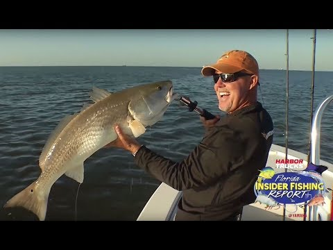 Redfish - 2019 | Florida Insider Fishing Report - Season 15, Episode 8