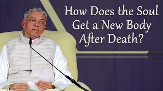 How Does the Soul Get a New Body After Death?