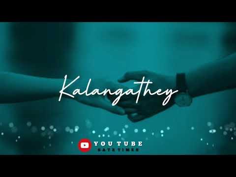 Vaanam Than Vizhunthalum Song Full Lyrics   Vizhiye Kalangathey