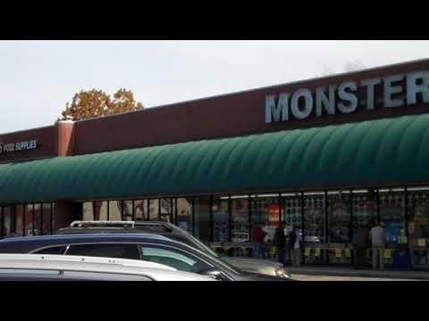 Monster Music in Charleston SC