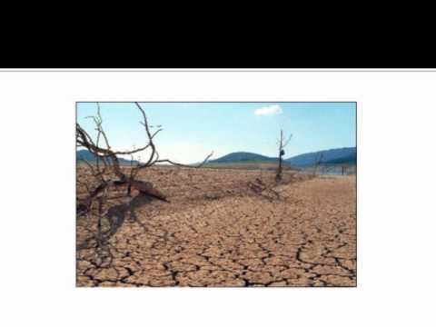 Josh Krueger- Perspectives Final Project- Global Warming