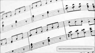 Vivaldi - L'Estate dalle Quattro Stagioni - Les Quatre Saisons