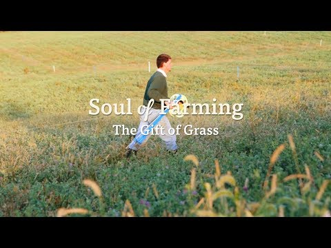 Soul of Farming - The Gift of Grass