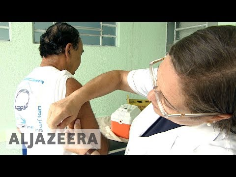 🇧🇷 Brazil: Millions vaccinated after yellow fever outbreak