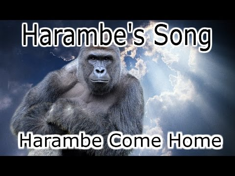 Harambe's Song (Harambe Come Home) - Cyanacide