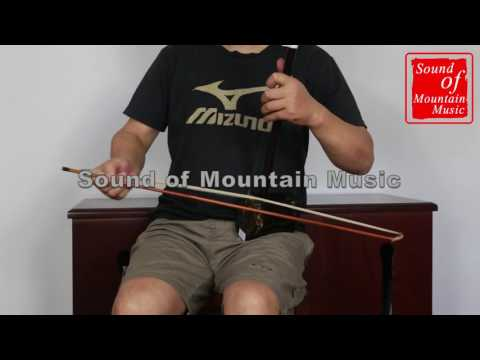 Professional Level Sandalwood Erhu Instrument Chinese Voilin Fiddle With Accessories