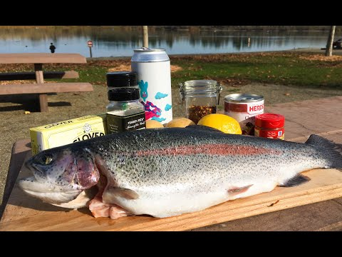 MOST DELICIOUS TROUT CATCH AND COOK | Fresh Water Fishing