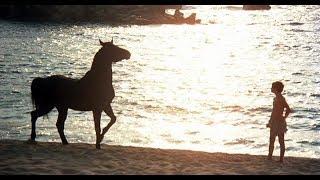 Топ 10 лучших фильмов о лошадях