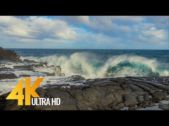 4K Relaxing Serenity of Big Island, Hawaii - Nature Relax Video - Short Preview