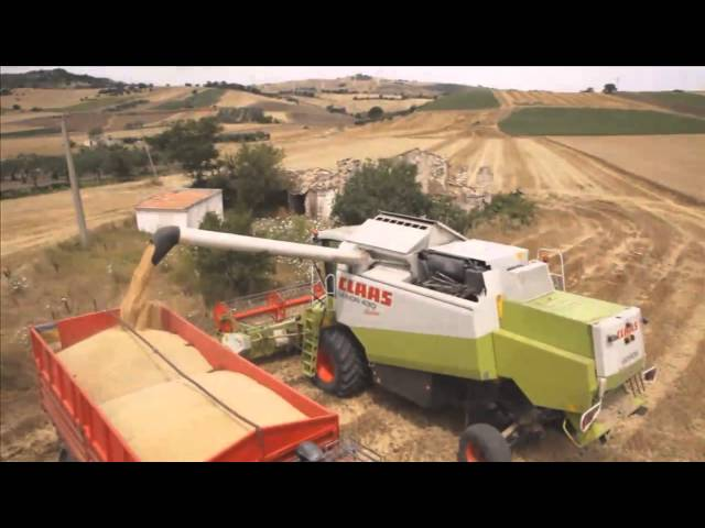 BKT AGRIMAX TERIS during harvesting 2