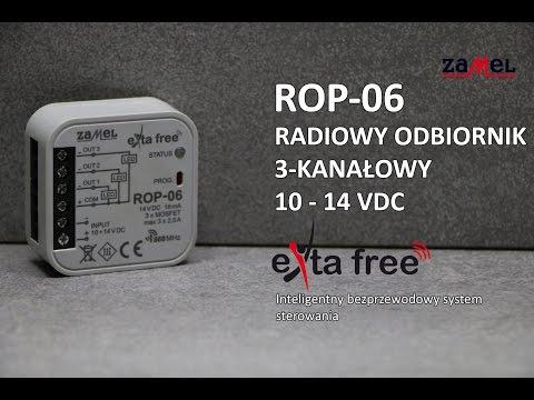 ROP-06