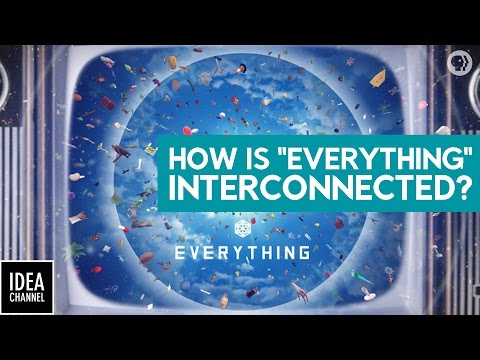 How Is Everything Interconnected?