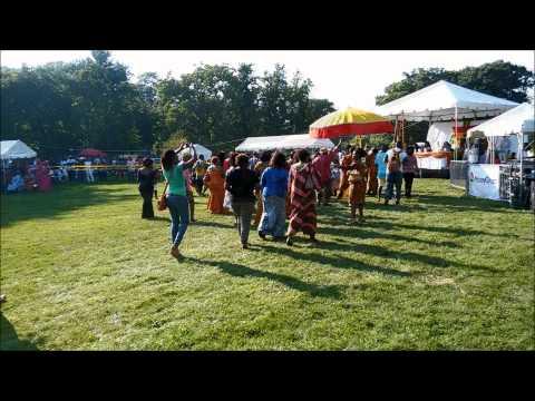 GHANA FEST 2015 Chicago Part 1