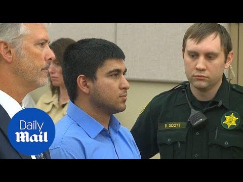 Washington mall shooting suspect appears in court in 2016 - Daily Mail