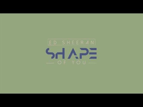 Shape Of You-Ed Sheeran   Lyrical Kinetic Typograpgy