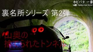 【裏名所#2】一人でイクのは危険!捨てられたトンネル!カピバラ一家代表のぶらり裏名所の旅(心霊スポット?) thumbnail