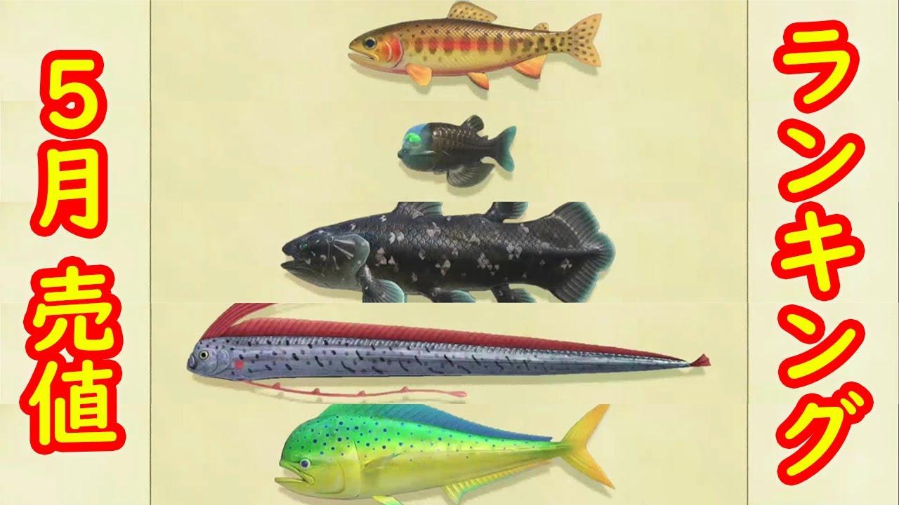 の 魚 どうぶつ 森 北半球