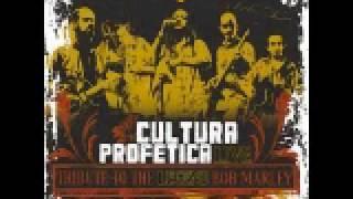 11-Pimpers Paradise (Tributo a Bob Marley en vivo) Cultura profetica.avi