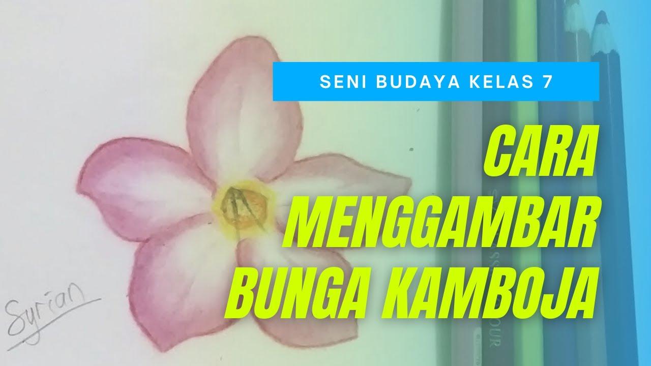 Sbk Kelas 7 Mewarnai Flora Bunga Kamboja Youtube